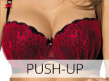 Push-up nedrcki modrcki modrci